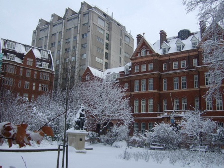 Queen Square in the snow