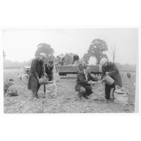Men working in field